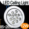 12W의 높은 Quality OEM&ODM LED Ceiling Lights